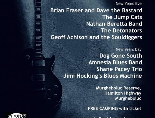 24th Bluestone Blues Festival